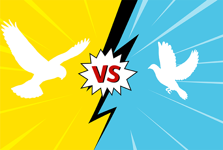 Hawk versus dove